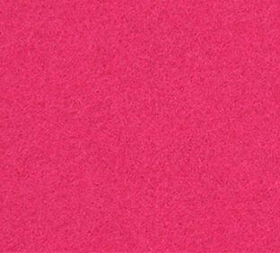 bloem-fuchsia