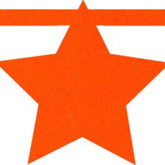 vilten ster in oranje voor naamslinger van Mevrouw Hendrik